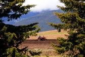 Bulgarian farmland — Stock Photo
