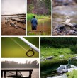 Stock Photo: Fishing collage
