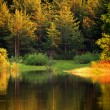 Autumn bulgarian lake — Stock fotografie