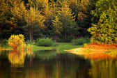 Autumn bulgarian lake — Stock Photo
