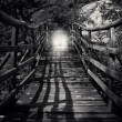 Stock Photo: Abstract bw wooden bridge
