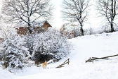 Bulgarian winter meadows — Stockfoto