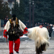 Stock Photo: Bansko traditions