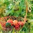 Easter basket — Stock Photo #41187345