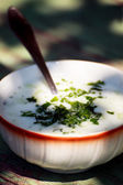 Bulgarian tarator soup  — Stock Photo