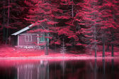 Infrared lake  — Stock Photo
