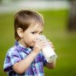 Little boy with glass of milk — Stock Photo #17455383