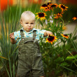 Stock Photo: Little boy sniffing flowers
