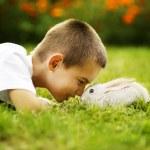Little boy with rabbit — Stock Photo
