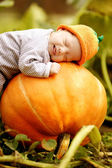 Baby sleeping on big pumpkin — Stockfoto