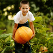 Little funny boy with pumpkin — Stock Photo #19223201
