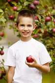 Funny boy with apple — Stock Photo