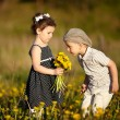Cute boy and girl on summer field — Stock Photo #19539881