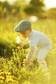 Schattige kleine jongen met paardebloemen — Stockfoto