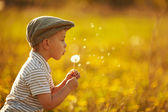 Cute little boy with dandelions — Stok fotoğraf