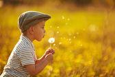 Süße kleine junge mit löwenzahn — Stockfoto