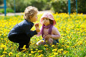 Boy and girl in summer flowers field — Stock Photo