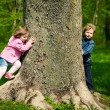 Stock Photo: Girl with boy playing hide and seek