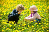 Boy and girl in flowers — Stock Photo