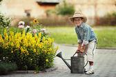 Liten pojke vattning blommor — Stockfoto