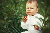 Little boy sitting in grass with strawberry — Stock Photo