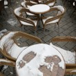 Stock Photo: Caffee garden on snow