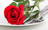 Close up of red rose, plate and cutlery — Stock Photo