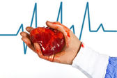Heart and ecg signal — Stock Photo