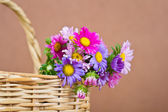 Basket brown with colourful flowers — Stock Photo