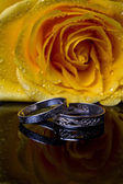 Yellow rose with ring — Stock Photo