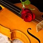 Violin sheet music and rose — Stock Photo #23814589