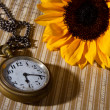 Stock Photo: Pocket watch and sunflower