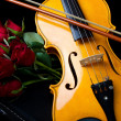 Violin on carry case — Stock Photo