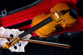 Violin in carry case — Stock Photo
