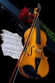 Violino in valigetta — Foto Stock