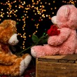 Two Teddie bear with white with red rose sitting — Stock Photo #26672651