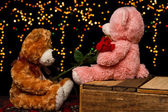 Two Teddie bear with white with red rose sitting — Stock Photo