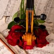 Violin on old sheet music and rose closeup — Stock Photo