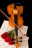 Violin sheet music and rose closeup still life — Stock Photo