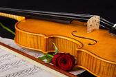 Violin sheet music and rose — Stock Photo