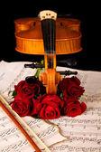 Violin sheet music and rose closeup still life — Stock Photo