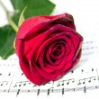 Roses on sheets of musical notes close up - Lizenzfreies Foto