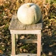 Pumpkin on a wooden chair - 