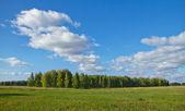 Krajina, podzimní — Stock fotografie