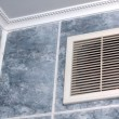 Stock Photo: Vent in bathroom