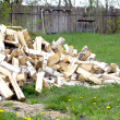 Pile of birch firewood — Stock fotografie