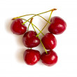 Stock Photo: Red Cherry