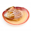 Seashell and starfish red — Stock Photo