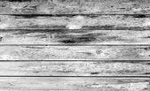 Texture — Photo
