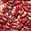 Red speckled beans — Stock Photo #37322151